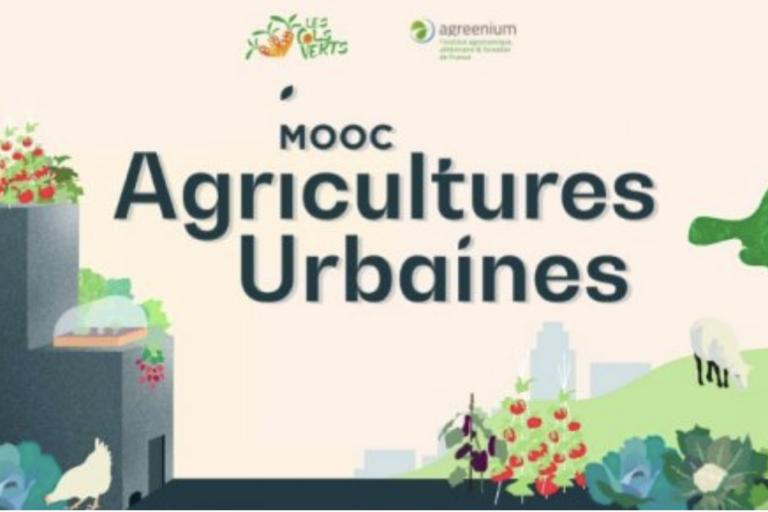 Un MOOC pour les porteurs de projets en agriculture urbaine